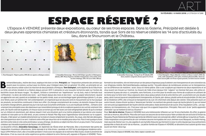 Article La strada, N°288.• La galeriePrécipitéTom Giampieri et Amandine Guruceaga19 janvier - 10 mars 2018