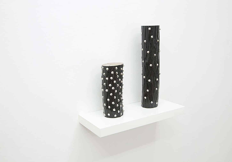 Lionel Scoccimaro,Petite bûche noire, 2013