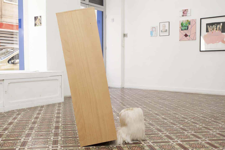 • La galerieThierry Lagalla, L'esperiença Plata (The Flat Experience), vue d'exposition