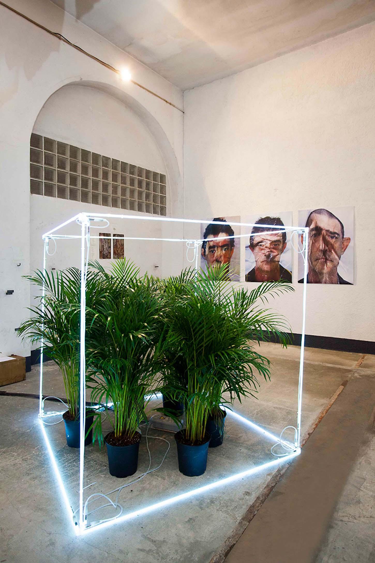 Espace A VENDRE, le Château, comme dans un jardin,  Kleber Matheus  Cube 150 cm3, Nice - France, 2016. Exemplaire unique.
