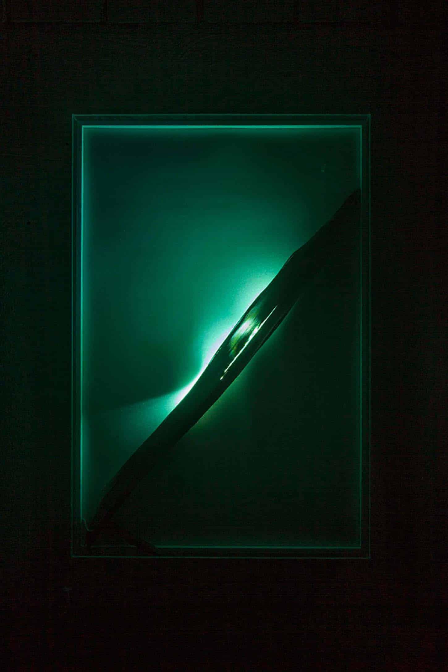 Espace A VENDRE. Eva Medin - SolsticeYuca 2Mousse, feuille de yuka, lumière, dispositif lumineux, cadre en plexiglas