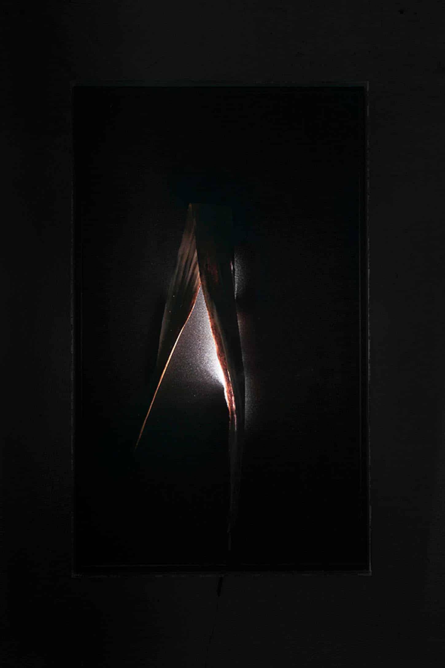 Espace A VENDRE. Eva Medin - SolsticeYuca 1Mousse, feuille de yuka, dispositif lumineux,cadre en plexiglas